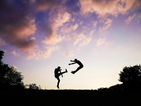 When it comes to hand-to-hand combat, are you well-trained?