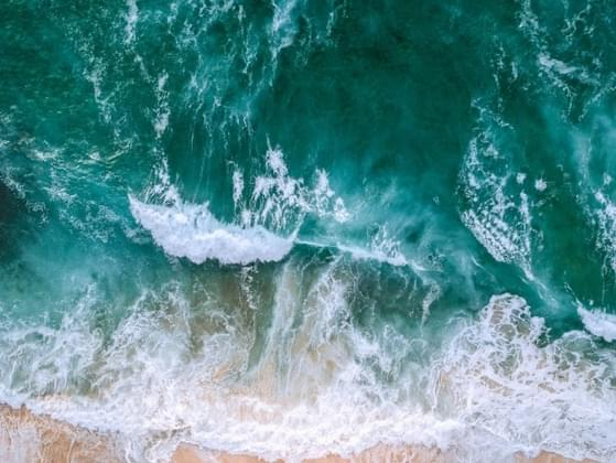 Which ocean do you think sounds most interesting?