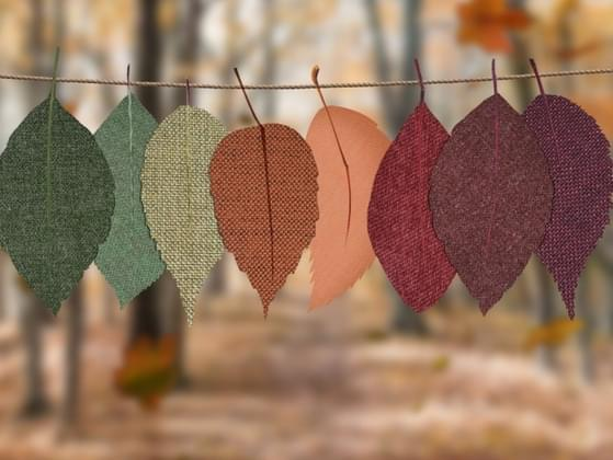 What's your favorite fall color?