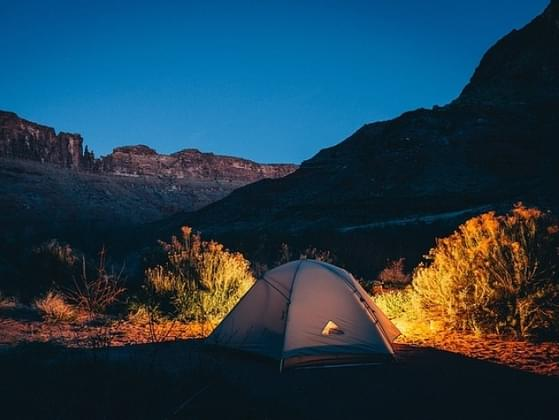 You are camping and you hear a noise. What is most likely outside of your tent?
