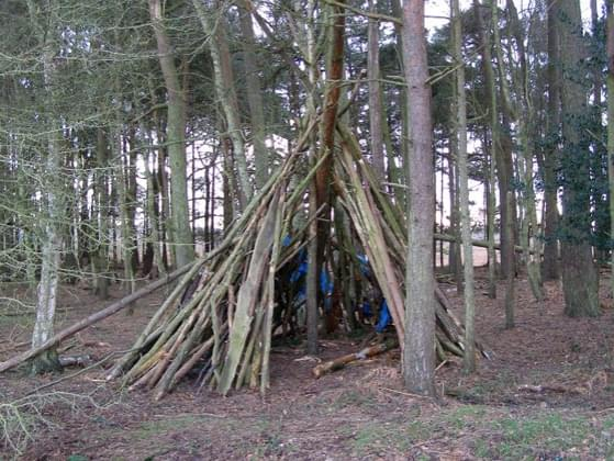 The night is quickly approaching and you need to build a shelter fast. Where do you build it?