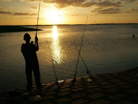 How would you rate your fishing skills on a scale of 1-10?