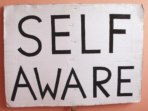 Would you describe yourself as a very self-aware person?