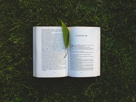 What kind of books do you like most?