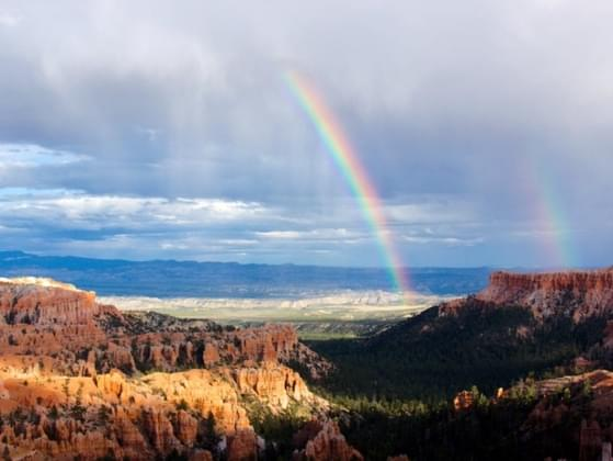 What do you most want to find at the end of the rainbow?