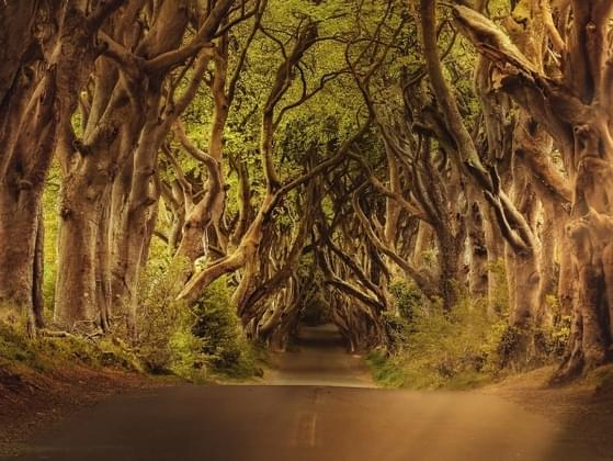 Where in Westeros would you move to?