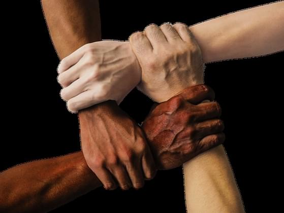 Do you believe in equal rights for people of all races?