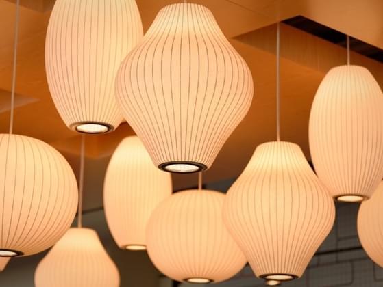 Warm lighting or bright white lighting?