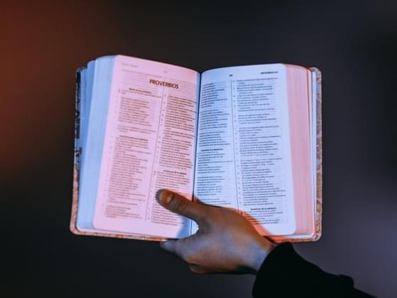 How often do you read the bible?