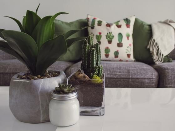 Which homeware trend is your favorite?