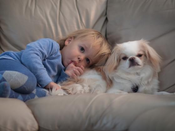 Do you currently have young children or other pets in your house?