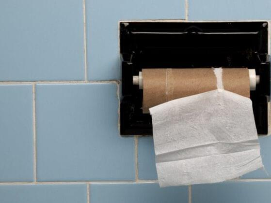 You're home alone, on the toilet, and completely run out of toilet paper. OH NO! How do you solve this awful problem?