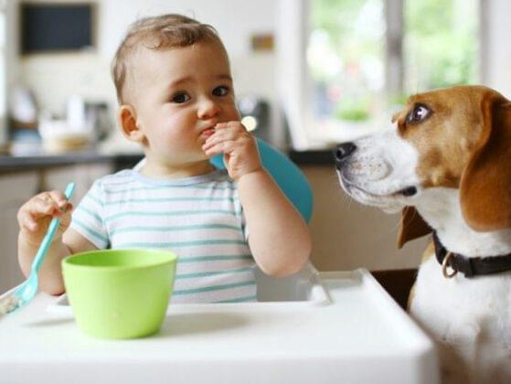 What would you name this baby with his dog BFF?