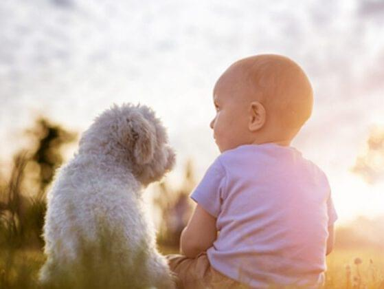Early exposure to animals is great for teaching your child empathy. Do they have any furry friends?