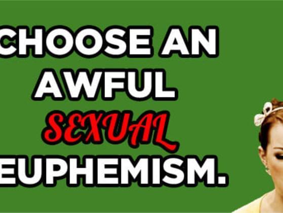 Choose an awful sexual euphemism