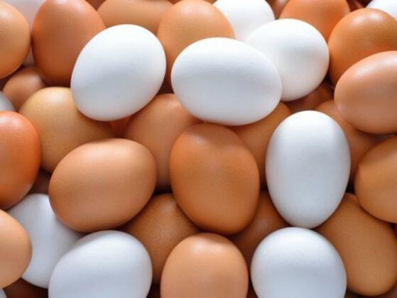 You're at the store. The egg varieties are overwhelming. What is the nutritional difference between brown eggs and white eggs?