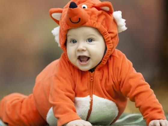 Babies and animals have personalities! Your child's spirit is most like a...