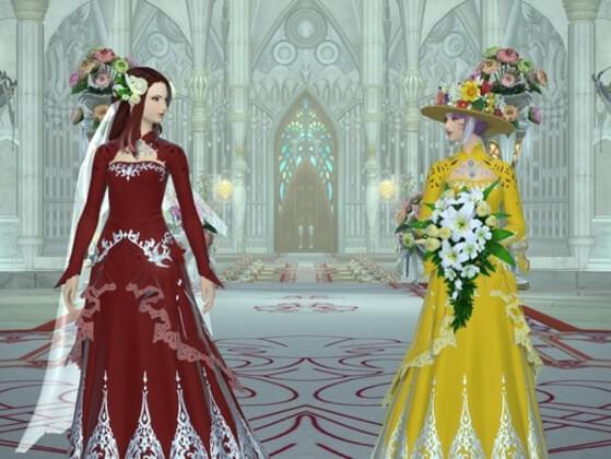 Ideal Wedding Fantasy?