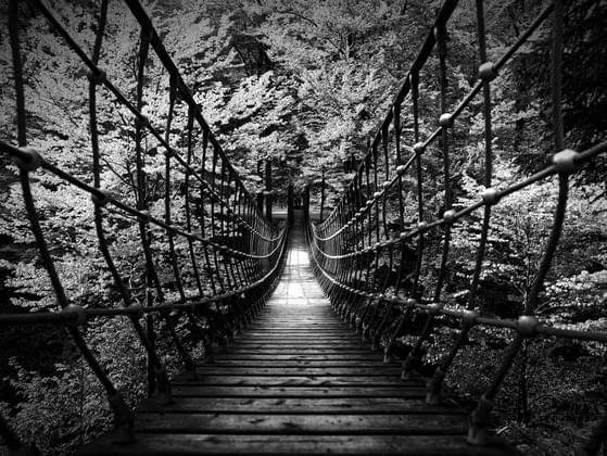 Would you ever try to walk across this bridge?