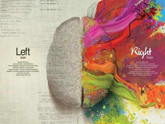 Right or left brain?